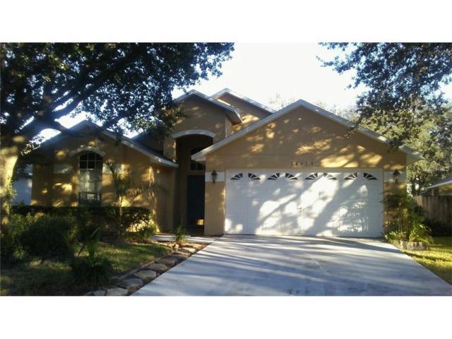 18959 Wood Sage Drive, Tampa, FL 33647 (MLS #T2908468) :: Team Bohannon Keller Williams, Tampa Properties