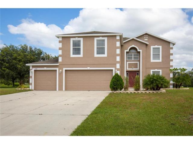 2510 Blakeford Way, Lutz, FL 33559 (MLS #T2908527) :: Team Bohannon Keller Williams, Tampa Properties