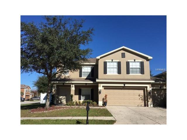 5814 Justicia Loop, Land O Lakes, FL 34639 (MLS #T2908545) :: Team Bohannon Keller Williams, Tampa Properties