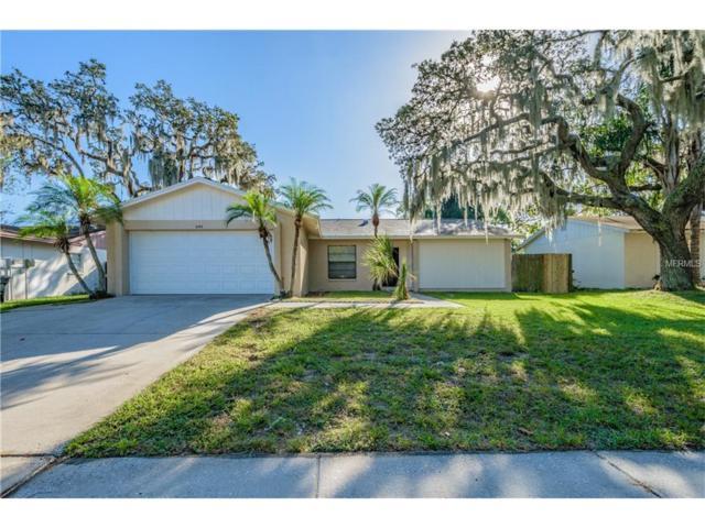 644 Bryan Terrace Drive, Brandon, FL 33511 (MLS #T2908554) :: Arruda Family Real Estate Team