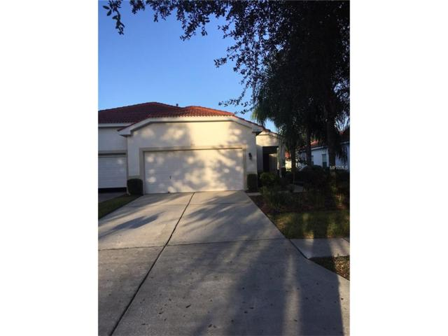 10257 Devonshire Lake Drive, Tampa, FL 33647 (MLS #T2908614) :: Team Bohannon Keller Williams, Tampa Properties