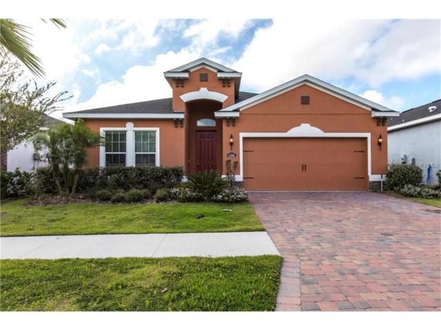 11341 Emerald Shore Drive, Riverview, FL 33579 (MLS #T2908678) :: Arruda Family Real Estate Team