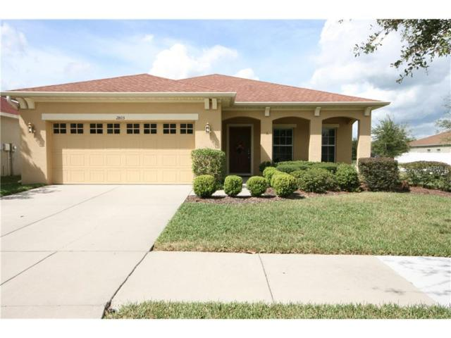 2803 Cypress Bowl Road, Lutz, FL 33558 (MLS #T2908771) :: Arruda Family Real Estate Team