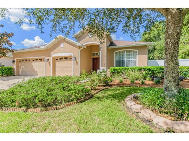 19228 Meadow Pine Drive, Tampa, FL 33647 (MLS #T2908794) :: Team Bohannon Keller Williams, Tampa Properties