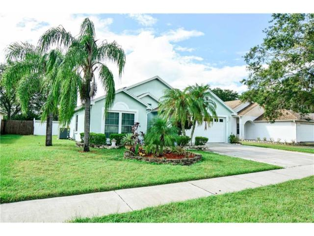 2062 Sarah Louise Drive, Brandon, FL 33510 (MLS #T2908811) :: Arruda Family Real Estate Team