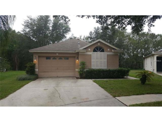 6001 Kiteridge Drive, Lithia, FL 33547 (MLS #T2908881) :: The Duncan Duo & Associates