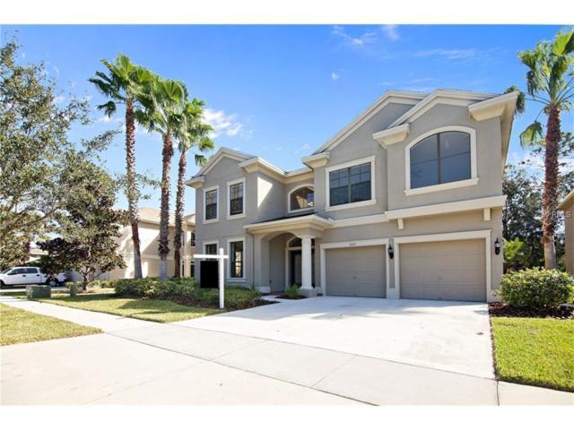 15615 N Himes Avenue, Tampa, FL 33618 (MLS #T2908958) :: Team Bohannon Keller Williams, Tampa Properties