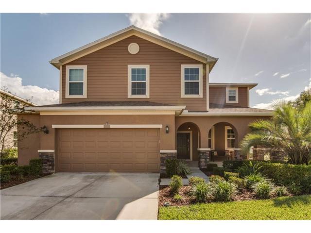23966 Campania Pass, Land O Lakes, FL 34639 (MLS #T2908967) :: Arruda Family Real Estate Team