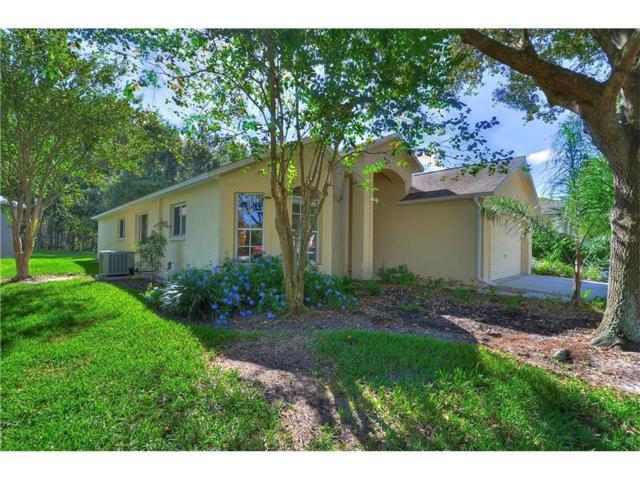 19117 Chemille Drive, Lutz, FL 33558 (MLS #T2909018) :: Arruda Family Real Estate Team