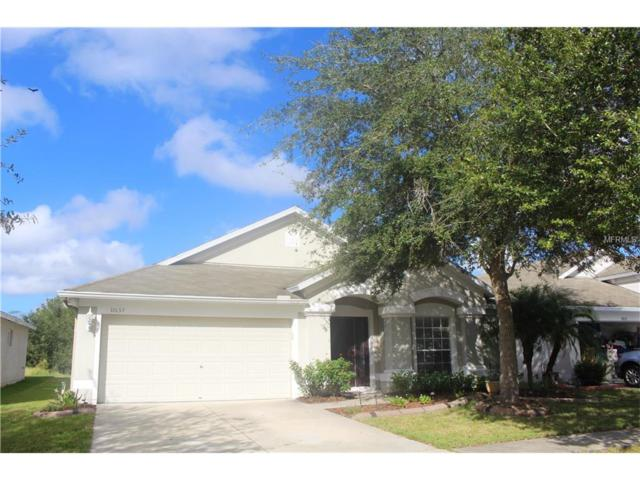 11657 Tropical Isle Lane, Riverview, FL 33579 (MLS #T2909032) :: Arruda Family Real Estate Team