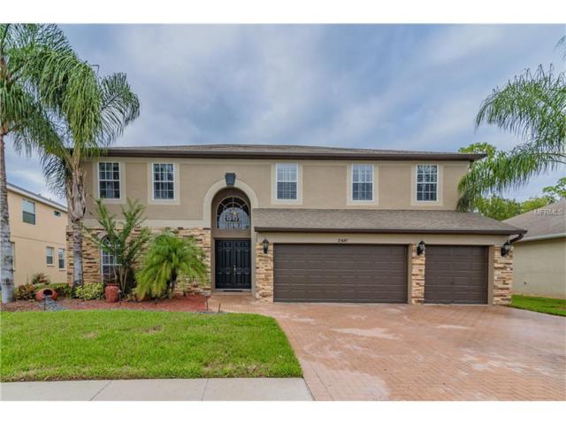 21647 Cormorant Cove Drive, Land O Lakes, FL 34637 (MLS #T2909037) :: Arruda Family Real Estate Team