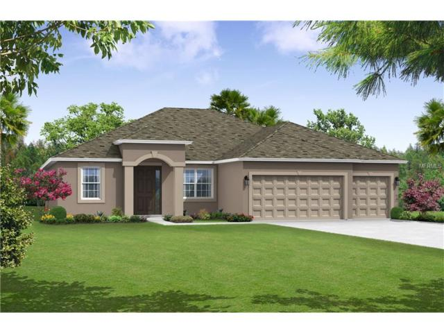 11624 Iris Spring Court, Riverview, FL 33579 (MLS #T2909041) :: Arruda Family Real Estate Team