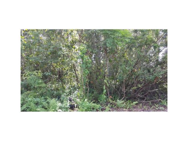 Riderwood Drive, Dade City, FL 33523 (MLS #T2909043) :: Godwin Realty Group