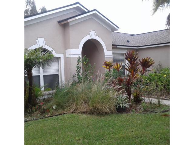 12707 Shadowcrest Court, Riverview, FL 33569 (MLS #T2909046) :: Arruda Family Real Estate Team