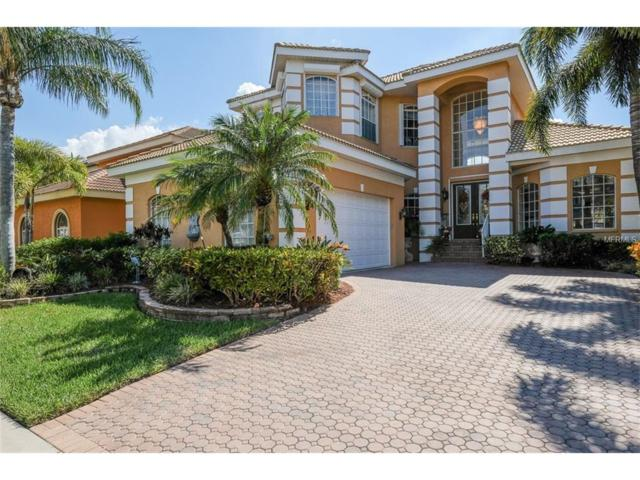 1234 Acappella Lane, Apollo Beach, FL 33572 (MLS #T2909050) :: Arruda Family Real Estate Team
