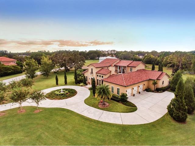 7713 Still Lakes Drive, Odessa, FL 33556 (MLS #T2909076) :: Team Bohannon Keller Williams, Tampa Properties