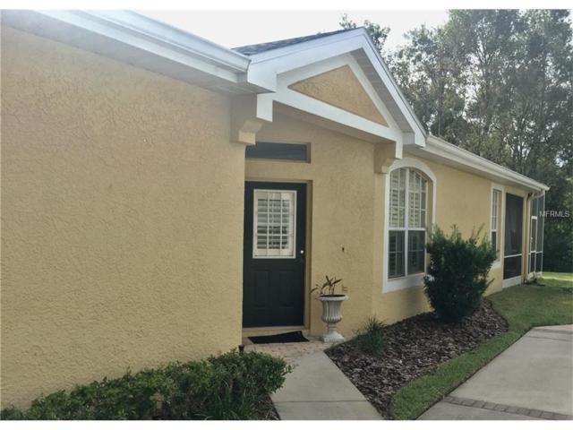 9832 Bridgeton Drive, Tampa, FL 33626 (MLS #T2909086) :: The Duncan Duo & Associates