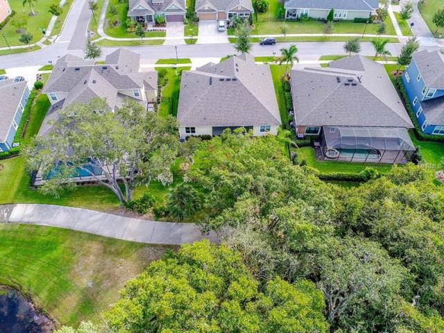 6646 Park Strand Drive, Apollo Beach, FL 33572 (MLS #T2909116) :: Arruda Family Real Estate Team
