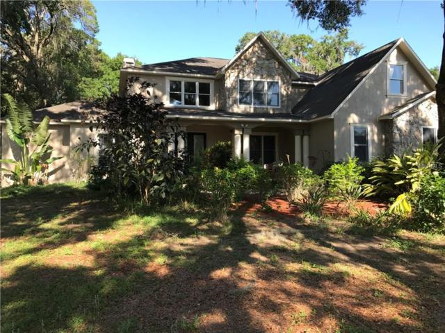 2819 Ranch Road, Valrico, FL 33596 (MLS #T2909129) :: Griffin Group