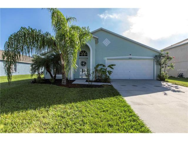 12922 Tribute Drive, Riverview, FL 33578 (MLS #T2909134) :: The Duncan Duo & Associates