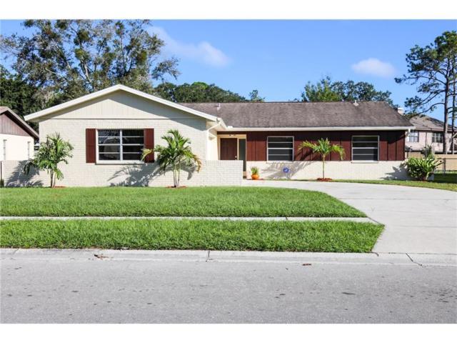 706 Sailfish Drive, Brandon, FL 33511 (MLS #T2909142) :: Arruda Family Real Estate Team