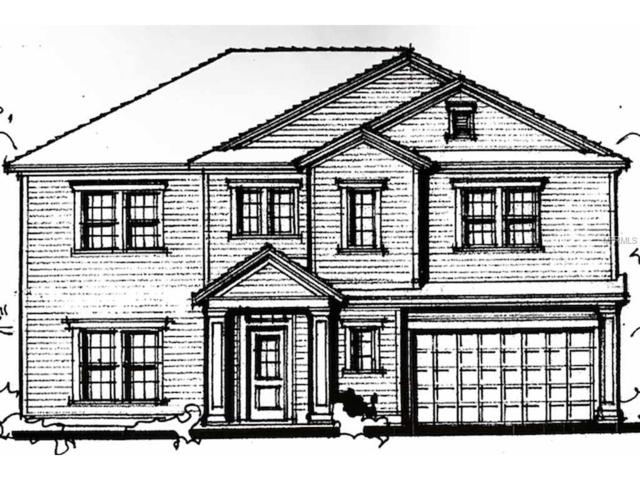 4304 W Obispo Street, Tampa, FL 33629 (MLS #T2909148) :: Arruda Family Real Estate Team