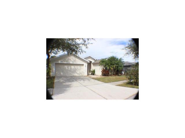 15040 Shaw Road, Tampa, FL 33625 (MLS #T2909155) :: Arruda Family Real Estate Team