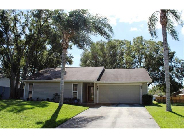3431 E Lake Drive, Land O Lakes, FL 34639 (MLS #T2909157) :: Griffin Group