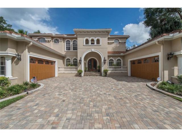15517 Avocetview Court, Lithia, FL 33547 (MLS #T2909163) :: Team Bohannon Keller Williams, Tampa Properties