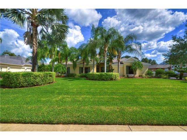 5506 Keeler Oak Street, Lithia, FL 33547 (MLS #T2909171) :: Arruda Family Real Estate Team