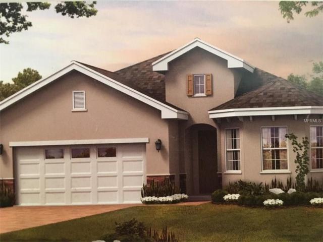 8155 Carlton Ridge Drive, Land O Lakes, FL 34638 (MLS #T2909175) :: Arruda Family Real Estate Team