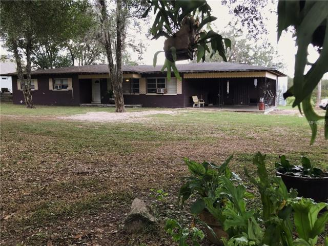 14003 Mcintosh Road, Thonotosassa, FL 33592 (MLS #T2909184) :: Griffin Group