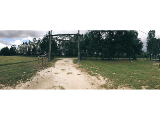 14023 Mcintosh Road, Thonotosassa, FL 33592 (MLS #T2909281) :: Griffin Group
