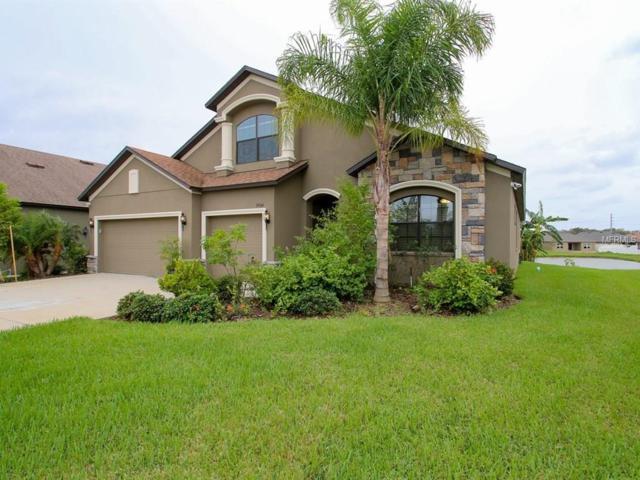 34104 Spring Oak Trail, Wesley Chapel, FL 33545 (MLS #T2909335) :: Team Bohannon Keller Williams, Tampa Properties