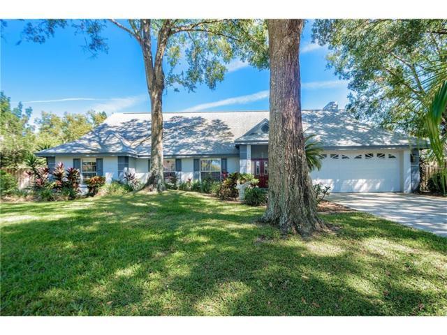 18413 Keystone Grove Boulevard, Odessa, FL 33556 (MLS #T2909355) :: Team Bohannon Keller Williams, Tampa Properties