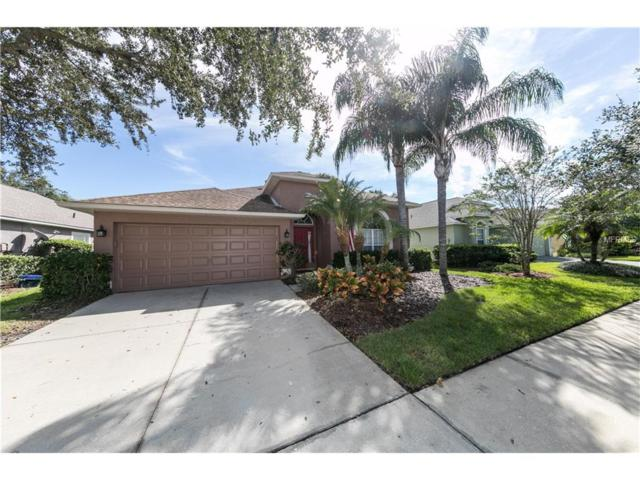 11808 Lancashire Drive, Tampa, FL 33626 (MLS #T2909377) :: Griffin Group