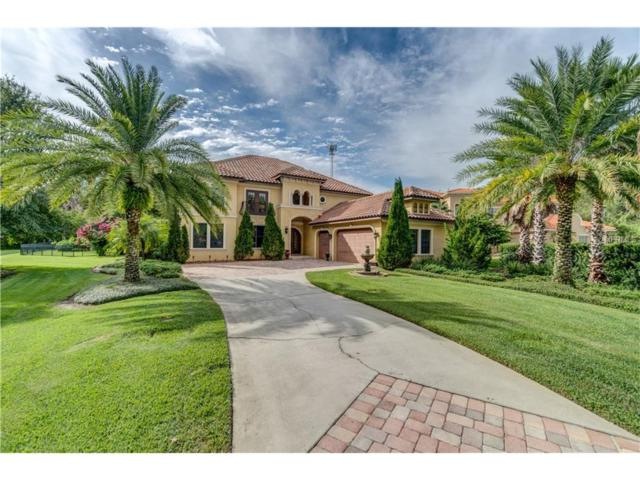 17208 Journeys End Drive, Odessa, FL 33556 (MLS #T2909413) :: Griffin Group
