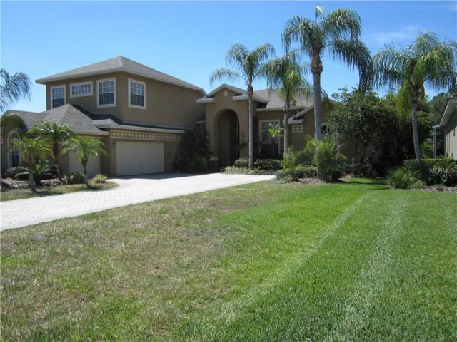 10532 Cory Lake Drive, Tampa, FL 33647 (MLS #T2909435) :: The Duncan Duo Team