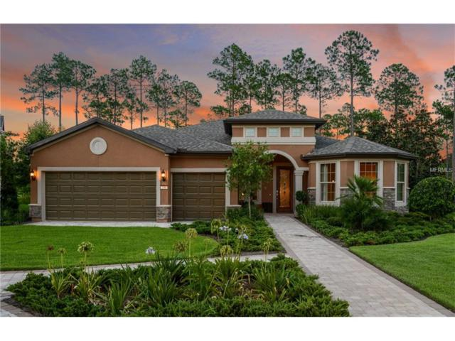 1013 Mare Way, Oviedo, FL 32765 (MLS #T2909442) :: Sosa   Philbeck Real Estate Group