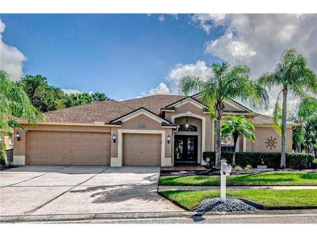 Wesley Chapel, FL 33544 :: Team Bohannon Keller Williams, Tampa Properties