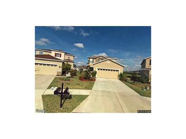 3518 Tarbolton Way, Land O Lakes, FL 34638 (MLS #T2909489) :: Team Bohannon Keller Williams, Tampa Properties