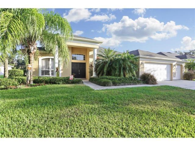 5705 Tanagerside Road, Lithia, FL 33547 (MLS #T2909500) :: The Duncan Duo & Associates