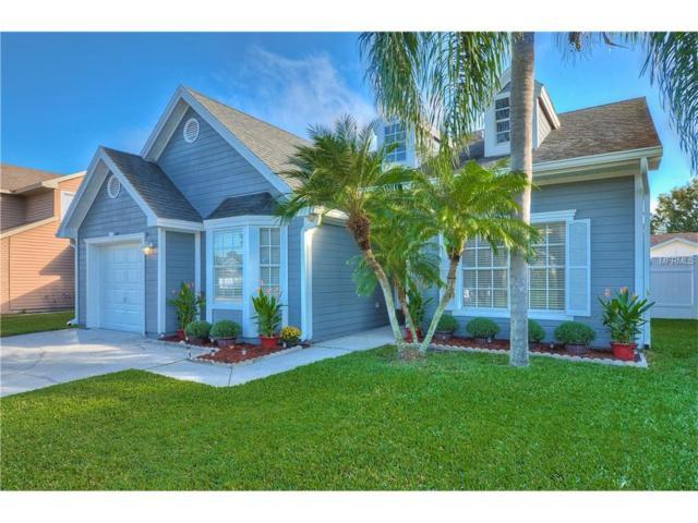 11868 Branch Mooring Drive, Tampa, FL 33635 (MLS #T2909531) :: Team Bohannon Keller Williams, Tampa Properties