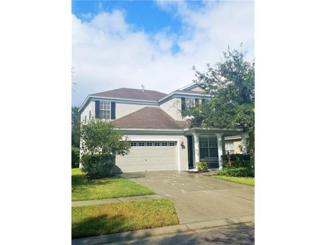 1217 Gentilly Lane, Wesley Chapel, FL 33544 (MLS #T2909534) :: Team Bohannon Keller Williams, Tampa Properties