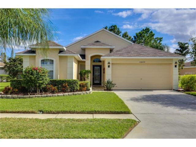 16820 Nikki Lane, Odessa, FL 33556 (MLS #T2909573) :: Griffin Group
