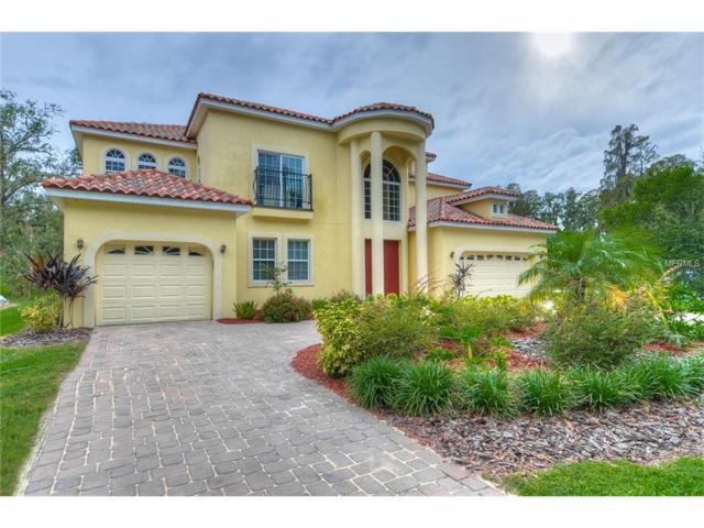 130 W Chapman Road, Lutz, FL 33548 (MLS #T2909589) :: The Duncan Duo & Associates