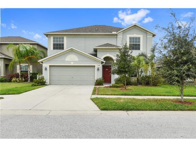 13144 Royal Pines Avenue, Riverview, FL 33579 (MLS #T2909603) :: The Duncan Duo & Associates