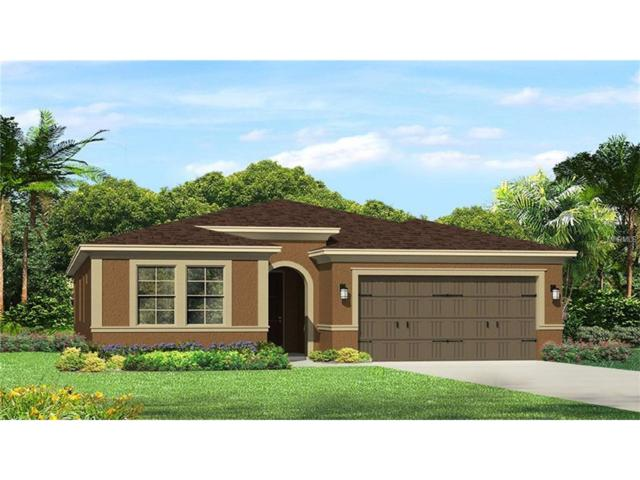 4593 Pensford Court, Wesley Chapel, FL 33543 (MLS #T2909607) :: The Duncan Duo & Associates
