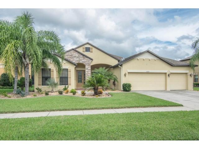 22317 Oakville Drive, Land O Lakes, FL 34639 (MLS #T2909617) :: Team Bohannon Keller Williams, Tampa Properties