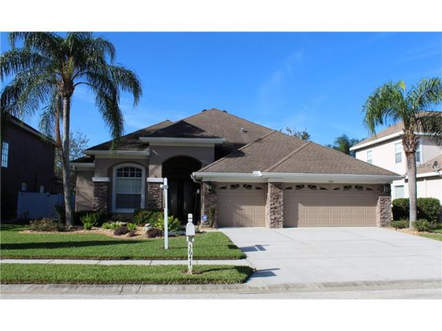 3641 Valencia Cove Court, Land O Lakes, FL 34639 (MLS #T2909647) :: Team Bohannon Keller Williams, Tampa Properties